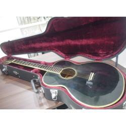 アコースティックギター タカミネ PT-105
