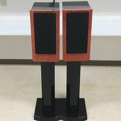 Acustik-Lab Stella Melody/ステラメロディ ステラフォルテス スタンドセット 箱付き