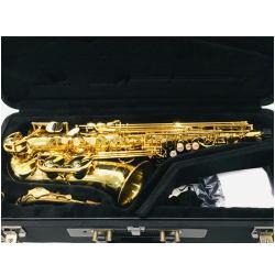 YANAGISAWA/ヤナギサワ Alto Saxophone アルトサックス A-WO1
